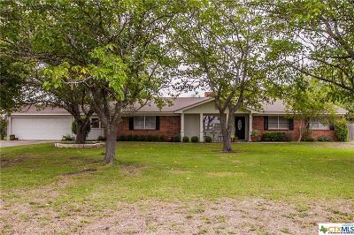 Lorena TX Single Family Home For Sale: $235,000