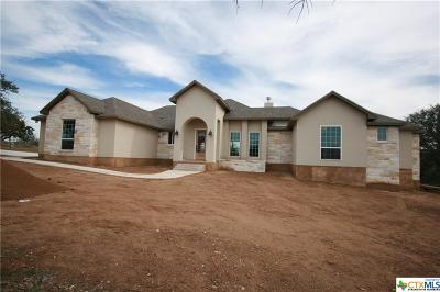 Burnet County Single Family Home For Sale: 1201 Park View Drive