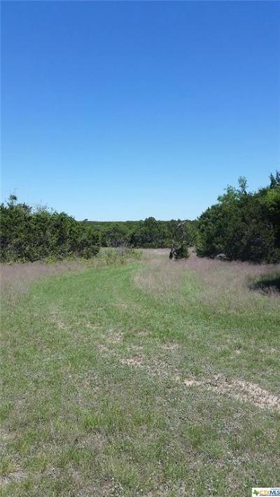 Lampasas Residential Lots & Land For Sale: Tbd Cr 3421