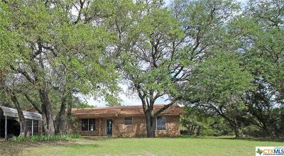 Killeen Single Family Home For Sale: 244 Terrace Drive