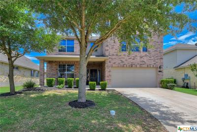New Braunfels Single Family Home For Sale: 910 Avery Parkway