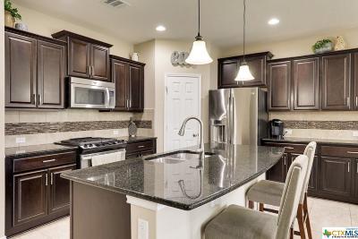 Round Rock Single Family Home For Sale: 3526 Guadalajara