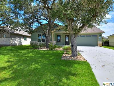 Liberty Hill TX Single Family Home For Sale: $309,000