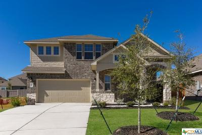 Kyle Single Family Home For Sale: 281 Windswept Way