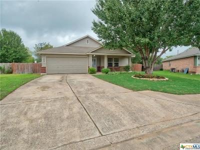 Kyle TX Single Family Home For Sale: $214,900