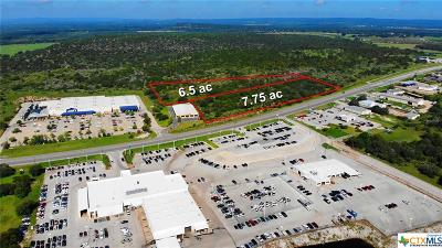 Commercial For Sale: 3350 N Us Hwy 281