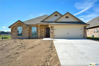Temple TX Single Family Home Pending: $244,500