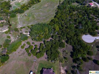 Copperas Cove, Kempner Residential Lots & Land For Sale: 191 County Road 3373