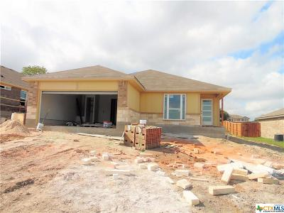 Temple TX Single Family Home Pending: $150,000