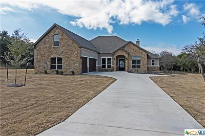 Williamson County Single Family Home For Sale: 141 San Juan