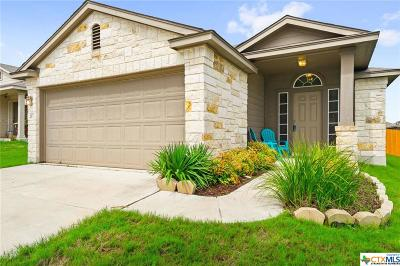 San Marcos Single Family Home For Sale: 237 Wisteria