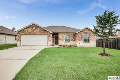 Temple, Belton Single Family Home For Sale: 7720 Fieldstone Drive