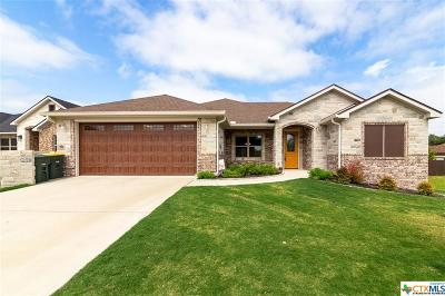 Salado Single Family Home For Sale: 345 Ow Lowrey