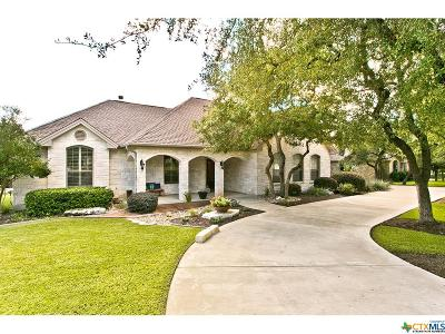 Williamson County Single Family Home For Sale: 217 Silver Leaf Drive