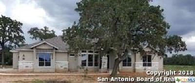 New Braunfels Single Family Home For Sale: 487 Curvatura
