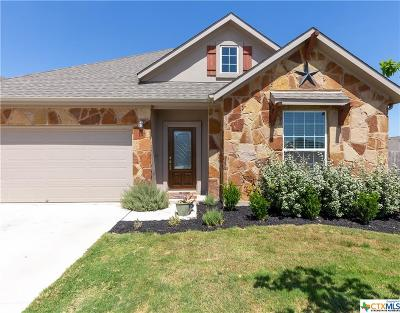 Round Rock Single Family Home For Sale: 7961 Bassano
