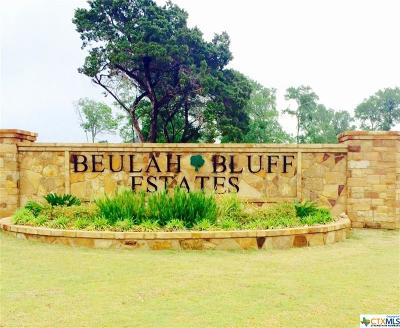 Belton, Temple Residential Lots & Land For Sale: 8404 Jericho Bluff