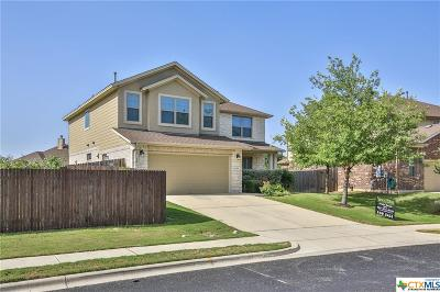 San Marcos TX Single Family Home For Sale: $295,000