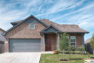 Buda Single Family Home For Sale: 167 Joseph