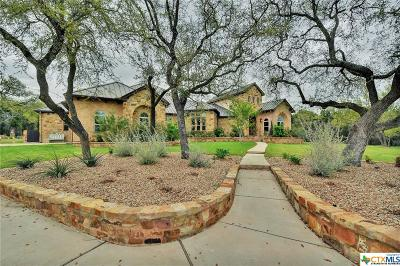Georgetown Single Family Home For Sale: 310 Windmill Ranch Road