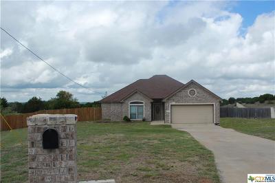 Killeen Single Family Home For Sale: 813 Irish Lane