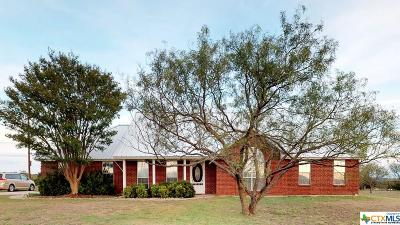 Kempner Single Family Home For Sale: 221 County Road 3150