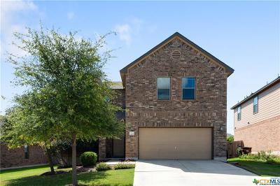 Round Rock Single Family Home For Sale: 1208 Hyde Park