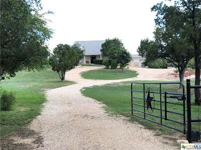 New Braunfels Single Family Home For Sale: 469 Bear Creek