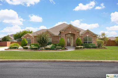 San Antonio Single Family Home For Sale: 14722 Dogwood Bend