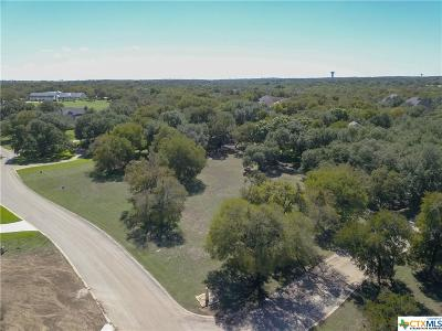 Salado Residential Lots & Land For Sale: 1661 Running Creek