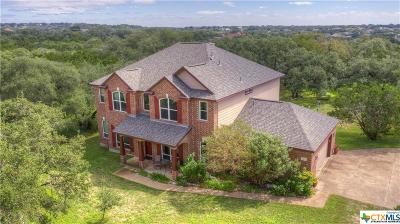 New Braunfels TX Single Family Home For Sale: $479,000