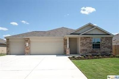 Kyle TX Single Family Home For Sale: $240,000