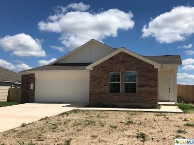 Kyle TX Single Family Home For Sale: $241,000