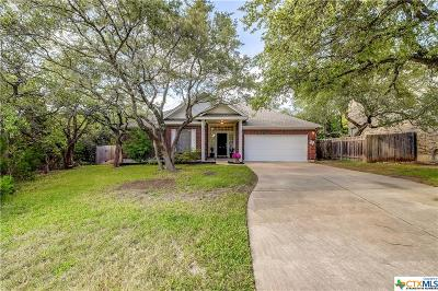 Cedar Park TX Single Family Home For Sale: $265,000