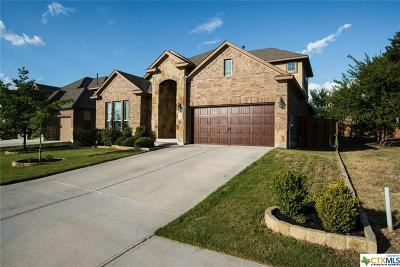 Georgetown TX Single Family Home For Sale: $389,998
