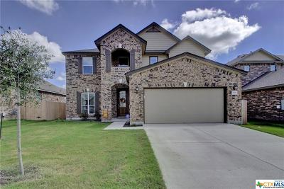 Round Rock Single Family Home For Sale: 7989 Arezzo