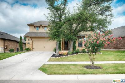 Williamson County Single Family Home For Sale: 116 Cibolo Ridge Drive