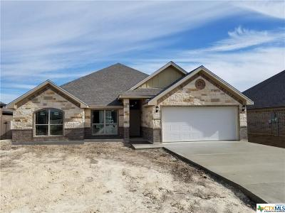Temple TX Single Family Home For Sale: $223,675