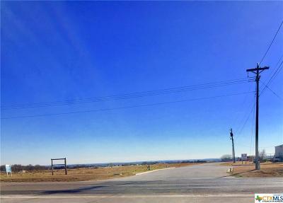 Belton Residential Lots & Land For Sale: 703 W Loop 121 Loop