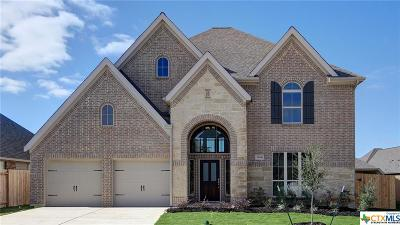 Seguin Single Family Home For Sale: 2936 Glen View