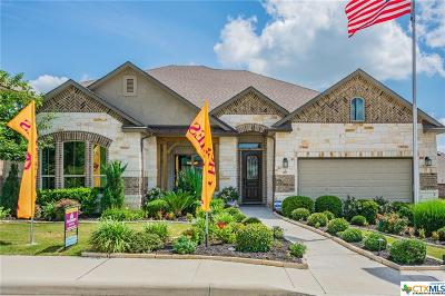 Cibolo Single Family Home For Sale: 865 Turning Stone