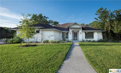 Belton, Temple Single Family Home For Sale: 3506 Lions Ridge Drive