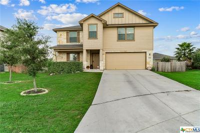 New Braunfels Single Family Home For Sale: 2448 Ibis Ave