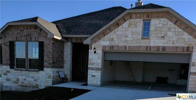 New Braunfels Single Family Home For Sale: 1214 Roaring Falls