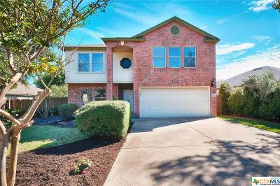 Round Rock Single Family Home For Sale: 1824 Chino Valley Trail
