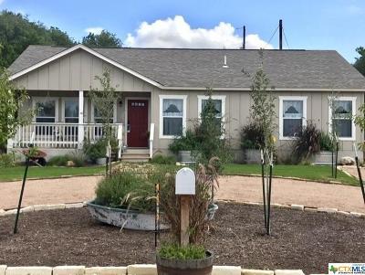 Canyon Lake Single Family Home For Sale: 670 Ridgerock Drive