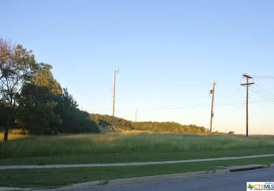 Harker Heights TX Residential Lots & Land For Sale: $350,000