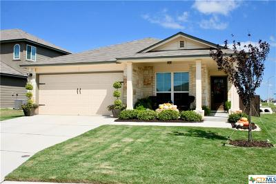 New Braunfels Single Family Home For Sale: 2255 Hawk Drive