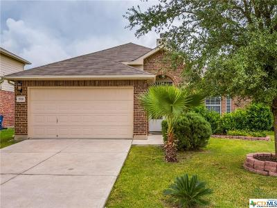 New Braunfels Single Family Home For Sale: 1910 Snowy Egret
