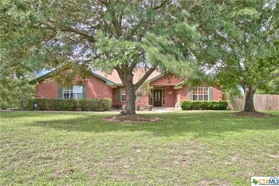 Seguin Single Family Home For Sale: 233 Windwood